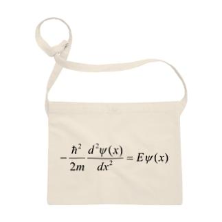 FCLBRの1次元の時間を含まないシュレディンガー方程式 Sacoches