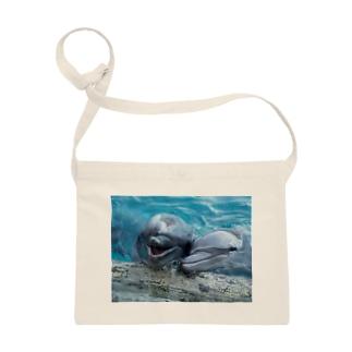 イルカ~ベストフレンド Sacoches