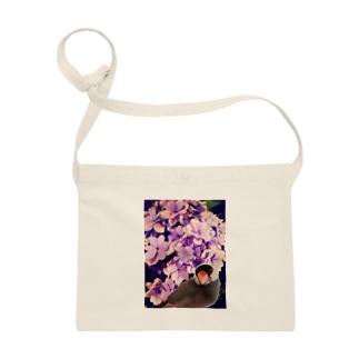 ノスタルジーな紫陽花と文鳥さん Sacoches