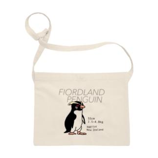 フィヨルドランドペンギン Sacoches