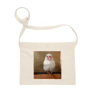 白文鳥のおもちさん Sacoches