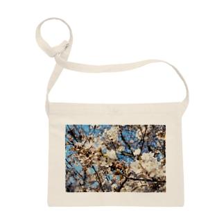 日本の春 桜B Sacoches