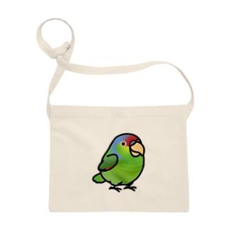 Chubby Bird フジイロボウシインコ Sacoches