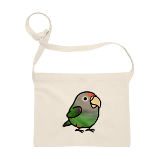 Chubby Bird ハネナガインコ Sacoches