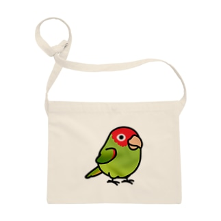 Chubby Bird オナガアカボウシインコ  Sacoches