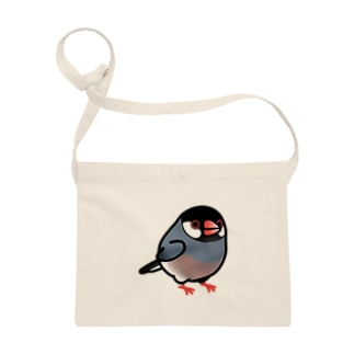 Chubby Bird 文鳥 Sacoches