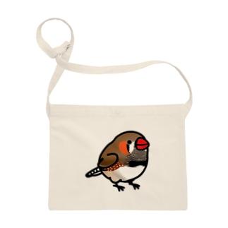 Chubby Bird キンカチョウ Sacoches