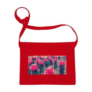 サボテンの花 プリント Sacoches