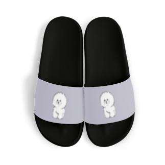 ビションフリーゼ(gray) Sandal