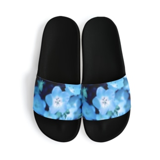 blue star Sandal