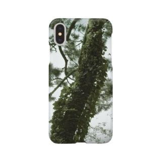 松と光(緑) Smartphone Case