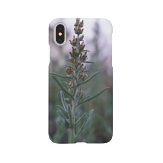 チチコグサモドキ Smartphone cases