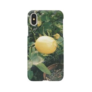家に成ったレモン Smartphone cases