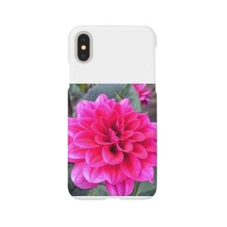 Daria Smartphone cases