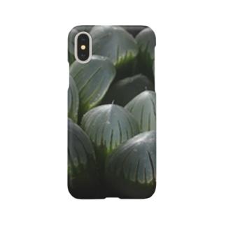 aomatuのハオルチア オブツーサ系4「ドドソン紫オブツーサ」 Smartphone cases