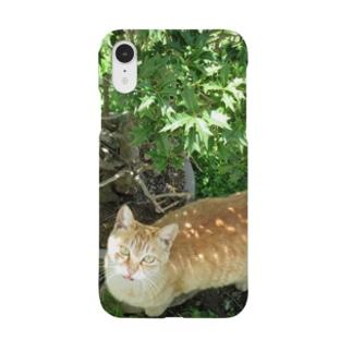 美人さんのチャトラ Smartphone cases