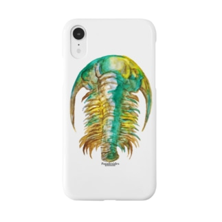 Paradoxides Smartphone cases