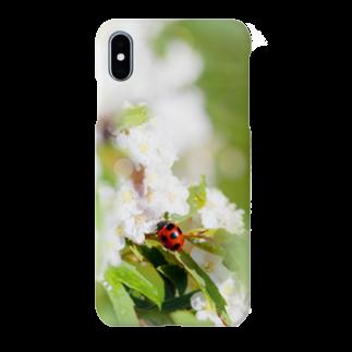 akane_artのてんとう虫とコデマリ Smartphone cases