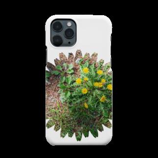 フォトルームイシマルの林の中のたんぽぽくん Smartphone cases