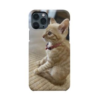ねこくん😼 Smartphone cases