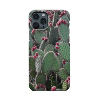 Tabbiesのウチワサボテン Smartphone cases
