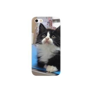 保護猫ぽんちゃん Smartphone cases