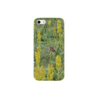 ナキウサギinメタカラコウ2 Smartphone cases