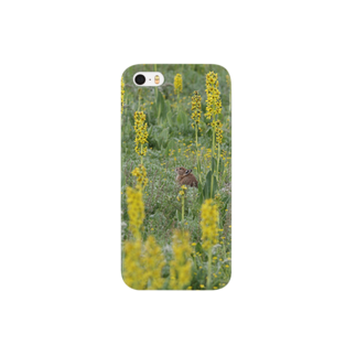 ゆきうさぎ工房のナキウサギinメタカラコウ2 Smartphone cases