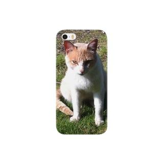 猫のプー吉 Smartphone cases