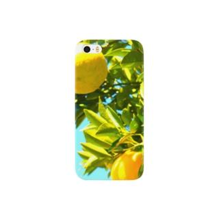 夏みかん Smartphone cases
