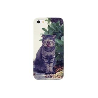 南国猫 Smartphone cases