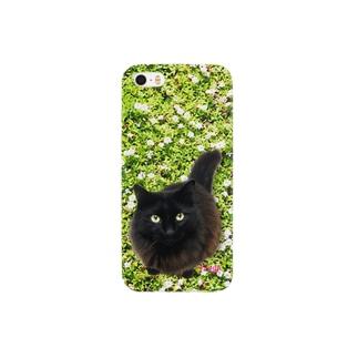 """黒猫 """"Tango"""" on the grass!  Smartphone cases"""