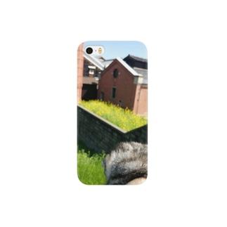 *猫シリーズ*マロマロと菜の花💐 Smartphone cases