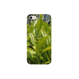 2014八女の新茶 Smartphone cases