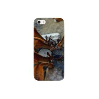 宮島の鹿 Smartphone cases