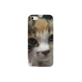 寝ぼけ子猫 Smartphone cases