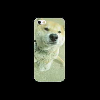 ゆずの柴犬ライチ② Smartphone cases