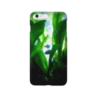 逆光のネオンテトラ Smartphone cases