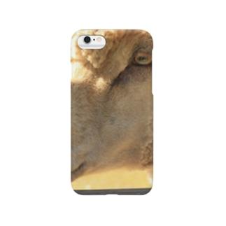 Peeping Smartphone cases