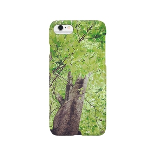 evergreen Smartphone cases