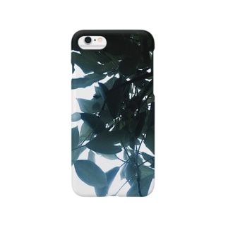 reini-Ao Smartphone cases