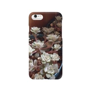 多肉植物♡ケープブランコ Smartphone cases