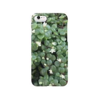 多肉植物♡ブロウメアナ Smartphone cases