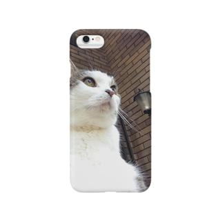いつもふてぶてしいうちの愛猫 Smartphone cases