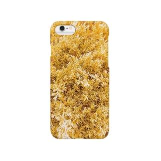 針葉樹風 2 Smartphone cases