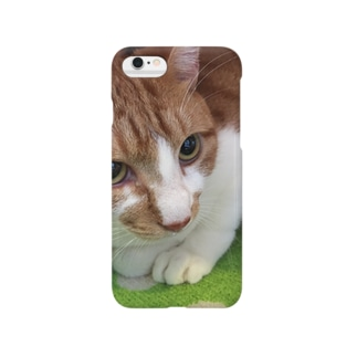ぽてとさんヾ(◍'౪`◍)ノ゙ Smartphone cases