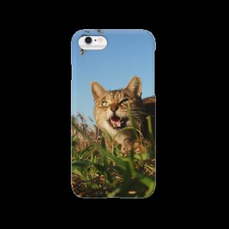 シッポ追いの猫写真店の遊ぼうぜ! Smartphone cases