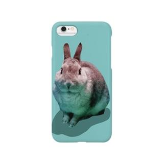 USAKORO☆ Smartphone cases