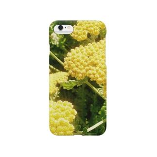 ヘリクリサム Smartphone cases