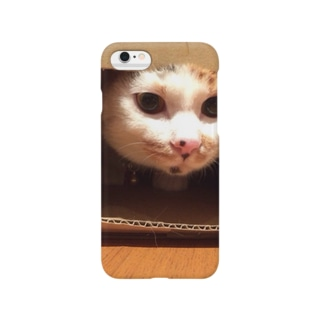 The calico cat  Smartphone cases